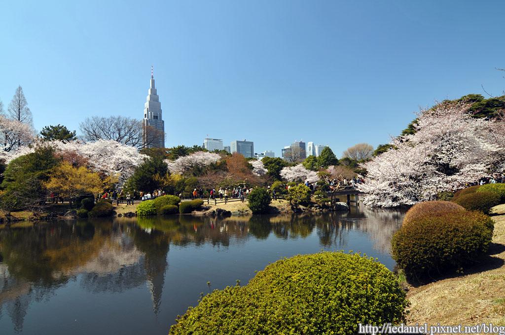 「新宿御苑画像」の画像検索結果